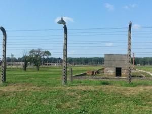 """Auschwitz-Birkenau - utsikten från en av lägrets """"hus""""."""