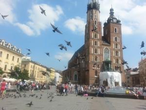 Kraków - fåglarna attackerar ;)